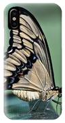 Thoas Swallowtail Butterfly IPhone Case