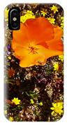 Three California Poppies Among Goldfields In Antelope Valley California Poppy Reserve IPhone Case