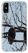 Three Eagles In Tree IPhone Case