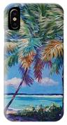 Three Palms- East End IPhone Case