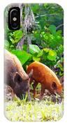 Three Pigs IPhone Case