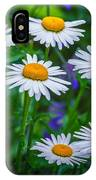 Three Tiers Of Beauty IPhone Case