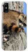 Three Young Raccoons IPhone Case