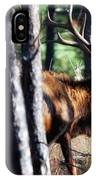 Thru The Trees IPhone Case