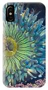 Tide Pool Sea Anemone IPhone Case