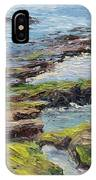 Tide Pools Revealed   Cardiff IPhone Case