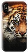 Tiger Bright IPhone Case