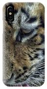 Tiger Drinking IPhone Case