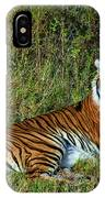 Tiger In The Grass IPhone Case
