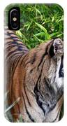 Tiger In The Vast Jungles IPhone Case