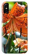 Tiger Lilies IPhone Case
