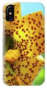Tiger 'n' Sky IPhone Case