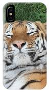 Tiger Nap Time IPhone Case
