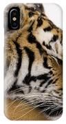 Tiger Sleeping IPhone X Case