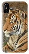 Tiger Stair IPhone Case