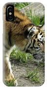 Tiger Stalking IPhone Case