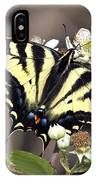 Tiger Swallowtail Butterfly 2a IPhone Case