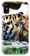 Tiger Taking A Dip IPhone Case