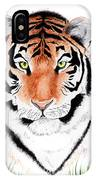 Tiger Tiger Where IPhone Case