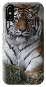 Tiger Waits IPhone Case