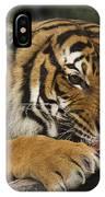 Tiger3 IPhone Case