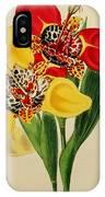 Tigridia Pavonia And Conchiflora IPhone Case