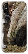 Timber Wolf In Pond IPhone Case