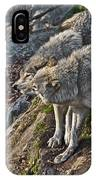 Timber Wolf Pictures 1094 IPhone Case