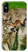 Timber Wolf Pictures 1593 IPhone Case