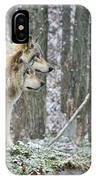 Timber Wolf Pictures 184 IPhone Case