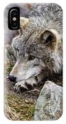 Timber Wolf Pictures 205 IPhone Case