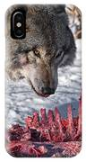 Timber Wolf Pictures 552 IPhone Case