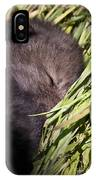 Timber Wolf Pictures 820 IPhone Case