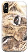 Tired Young Lion IPhone Case