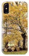 Tombs Under Oaktree IPhone Case