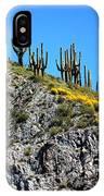 Tonto Ridge 16112 2 IPhone Case
