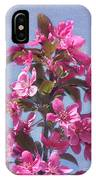 Top Of The Apple Tree IPhone Case