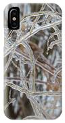 Toronto Ice Storm 2013 - Pale Frozen Grasses  IPhone Case