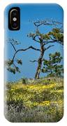 Torrey Pine On The Cliffs At Torrey Pines State Natural Reserve IPhone Case