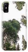 Towering Pine Trees IPhone Case