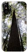 Towering Timber IPhone Case