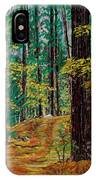 Trail At Wason Pond IPhone Case