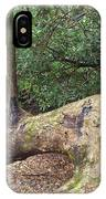 Trail Marker IPhone Case