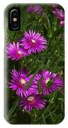 Trailing Ice Plant IPhone Case