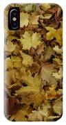 Transition Of Autumn IPhone Case