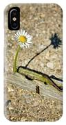 Trapped White Daisy IPhone Case