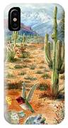 Treasures Of The Desert IPhone Case