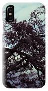 Tree Against Sky IPhone Case