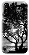 Tree And Sun IPhone Case