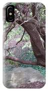 Tree At Boat House IPhone Case